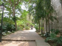 Jardin Madre Teresa de Calcuta