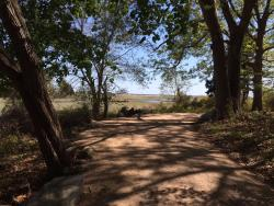 The Shoreline Greenway Trail