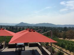Cooper Ridge Vineyards