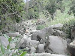 Geiseres de Ixcatan