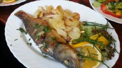 Atlantik Fisch