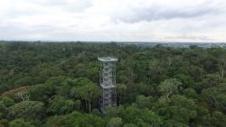 Manaus Botanical Garden - MUSA