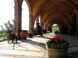 Azienda Agricola Monte Tondo