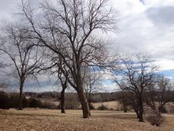 Clinton State Park
