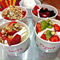 Yogurt Berry