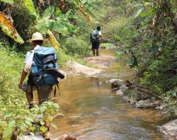 Amazing Trekking Tour