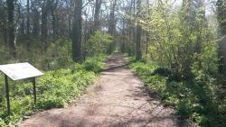 Mowsbury Park