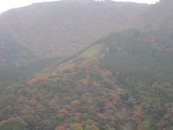 Taikoyu