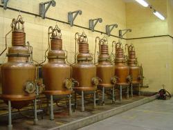 Distillerie Verveine du Velay Pagès