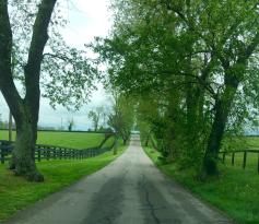 Kentucky Scenic Byway