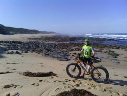 Bass Coast Fat Bikes