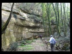 Alta Valle del torrente Carfalo
