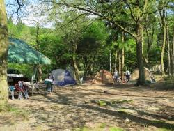 Hirokawahara Camp Site