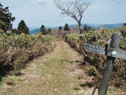 Daruga Peak