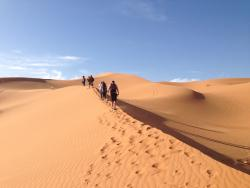 Merzouga Camel Trekking - Day Tours