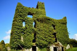 Menlo Castle / Blake's Castle