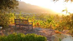 Wine tasting in Ojai