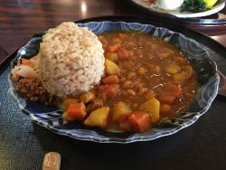 Ginga no Hotori