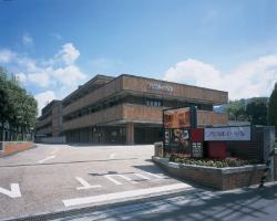 Apical Inn