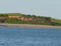 South West Coast Path - Otter Valley Wildlife Walk