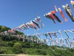 Sagami River Koinobori Festival