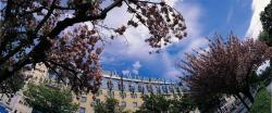 Arcotel Wimberger Hotel