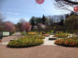 Botanical Garden (Botaniska Tradgarden)