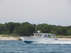 Monomoy Island Excursions