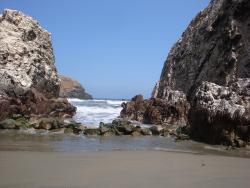 Playa Asia
