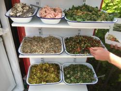 Spier's Salads