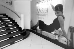 Museum of Style Icons (M.O.S.I)