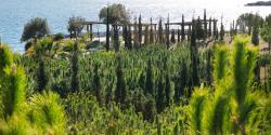 Parque del Mediterraneo
