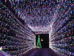 Land of Lights athens texas