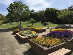 Tarusaka Park