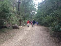Convict Trail