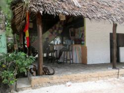 Bidi Badu Sport Hostel