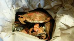 Captain Bob's Crabs
