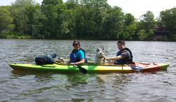 Penguin Paddling LLC