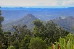 Mount Warning Summit Trail