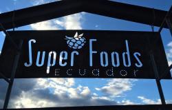 SuperFoods Ecuador