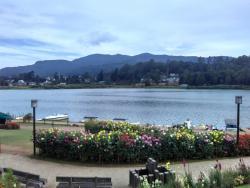 格雷戈里湖