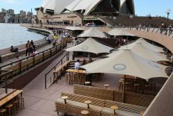 悉尼港环游
