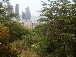 Jangsan Mountain