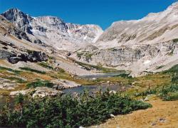 Wild Basin Area
