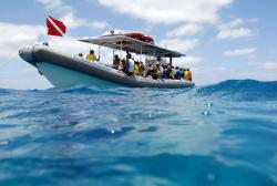 Ko Olina Ocean Adventures