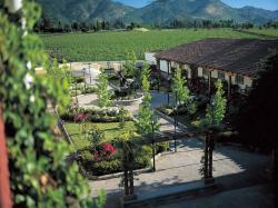 Ruta del Vino - Alto Cachapoal