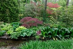 Arboretum des Pres des Culands