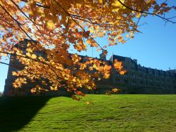 Fall - one of our four favorite seasons here at Hilton Pearl River.