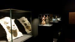Museo de Centro de Historias