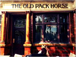 The Old Pack Horse